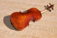 wood floors with a violin